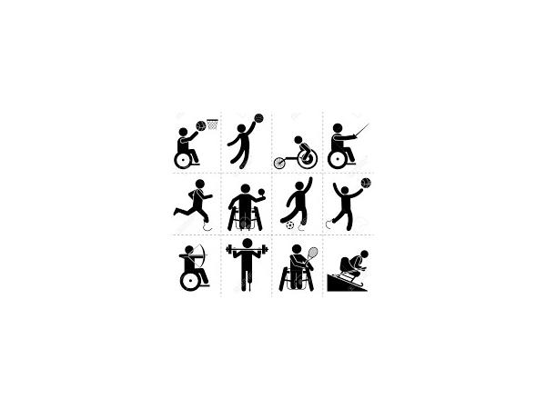 Sports Inclusion Development Programme
